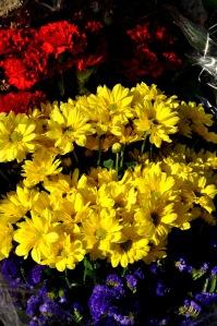 Detalle de las flores con la bandera tricolor